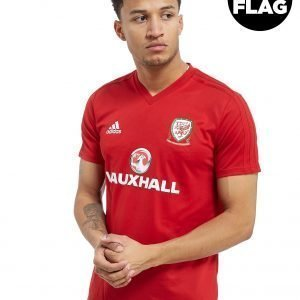 Adidas Fa Wales 2018/19 Training Shirt Punainen