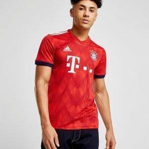 Adidas Fc Bayern Munich 2018/19 Home Paita Ennakkotilaus Punainen