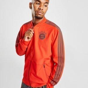 Adidas Fc Bayern Munich Presentation Jacket Punainen