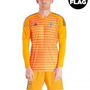 Adidas Northern Ireland 2018/19 Home Goalkeeper Shirt Oranssi