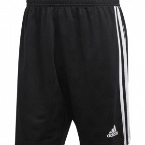 Adidas Tan Jqd Shorts Jalkapalloshortsit