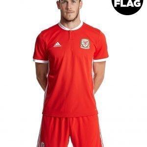 Adidas Wales 2018/19 Home Shirt Punainen