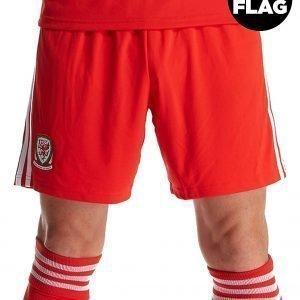 Adidas Wales 2018/19 Home Shorts Punainen