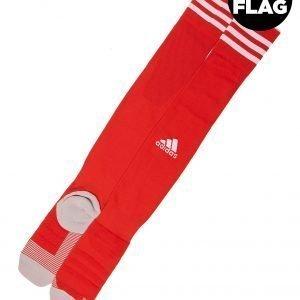 Adidas Wales 2018/19 Home Socks Punainen