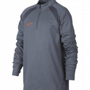 Nike Nk Acd Dr Top Sm Treenipaita