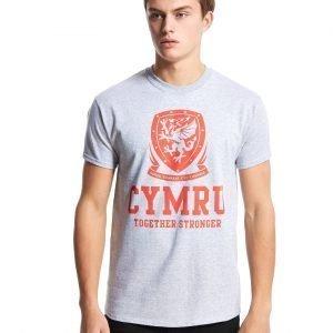 Official Team Wales Cymru T-Shirt Grey Marl