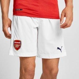 Puma Arsenal Fc 2018/19 Home Shorts Valkoinen