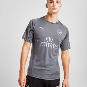 Puma Arsenal Fc Training Shirt Harmaa