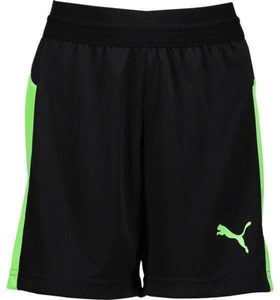 Puma J Evotrg Shorts It Jalkapalloshortsit