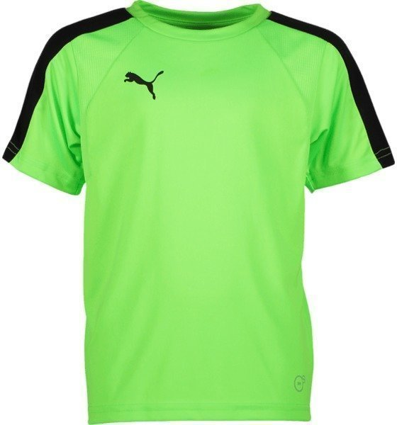 Puma J Evotrg Training Tee It Jalkapallopaita